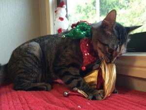 Sassy Christmas 2 A1253167