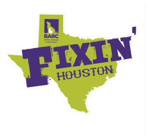 fixin houston JPEG