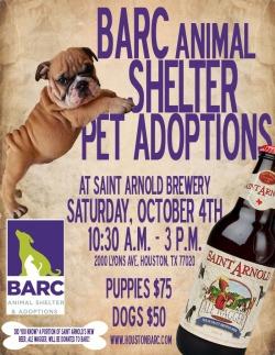 October 4th Saint Arnold Pet Adoptions
