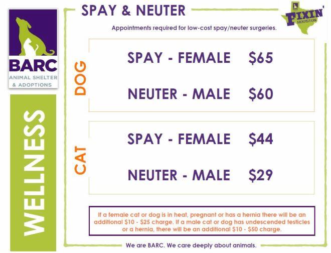 SpayNeuter Prices