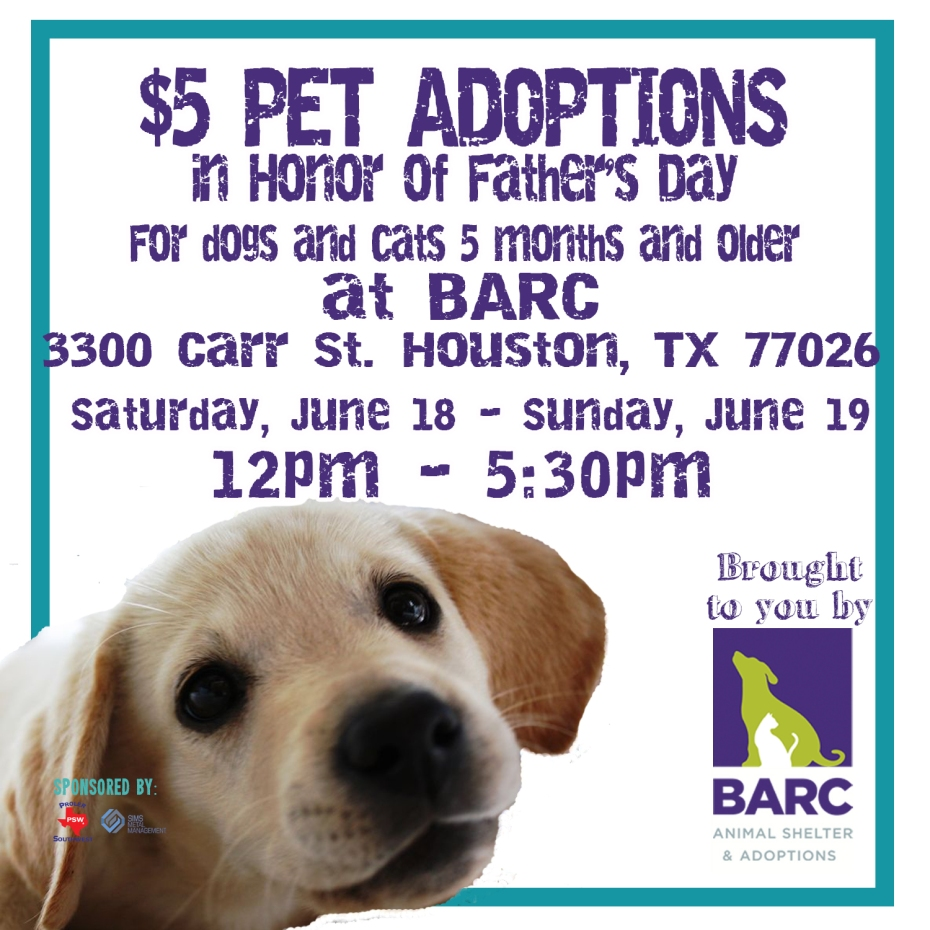 $5 Adoptions at BARC_Father's Day Promo